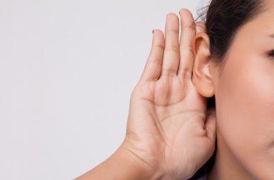 Z czego składa się narząd słuchu?